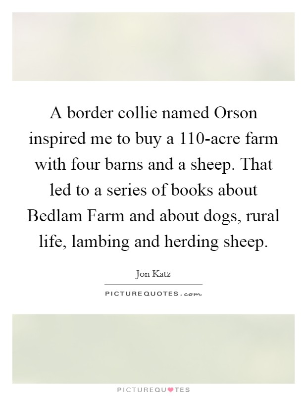 A border collie named Orson inspired me to buy a 110-acre farm with four barns and a sheep. That led to a series of books about Bedlam Farm and about dogs, rural life, lambing and herding sheep Picture Quote #1