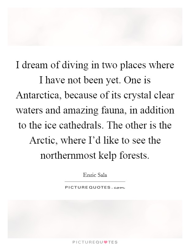 I dream of diving in two places where I have not been yet. One is Antarctica, because of its crystal clear waters and amazing fauna, in addition to the ice cathedrals. The other is the Arctic, where I'd like to see the northernmost kelp forests Picture Quote #1
