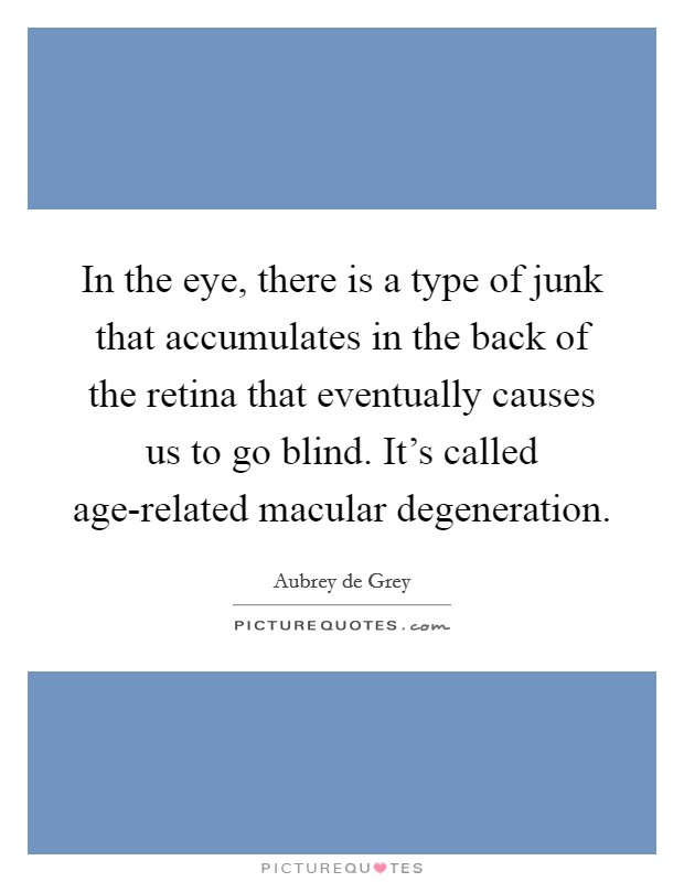 In the eye, there is a type of junk that accumulates in the back of the retina that eventually causes us to go blind. It's called age-related macular degeneration Picture Quote #1
