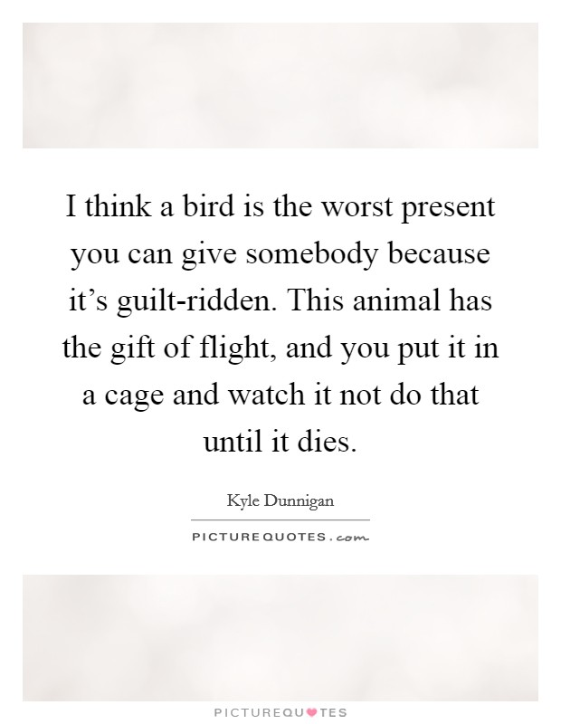 I think a bird is the worst present you can give somebody because it's guilt-ridden. This animal has the gift of flight, and you put it in a cage and watch it not do that until it dies Picture Quote #1