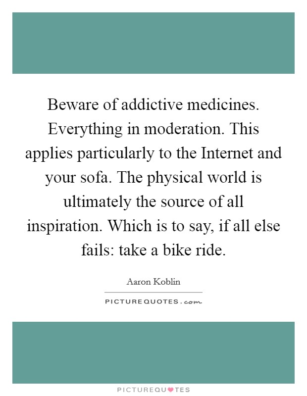 Beware of addictive medicines. Everything in moderation. This applies particularly to the Internet and your sofa. The physical world is ultimately the source of all inspiration. Which is to say, if all else fails: take a bike ride Picture Quote #1