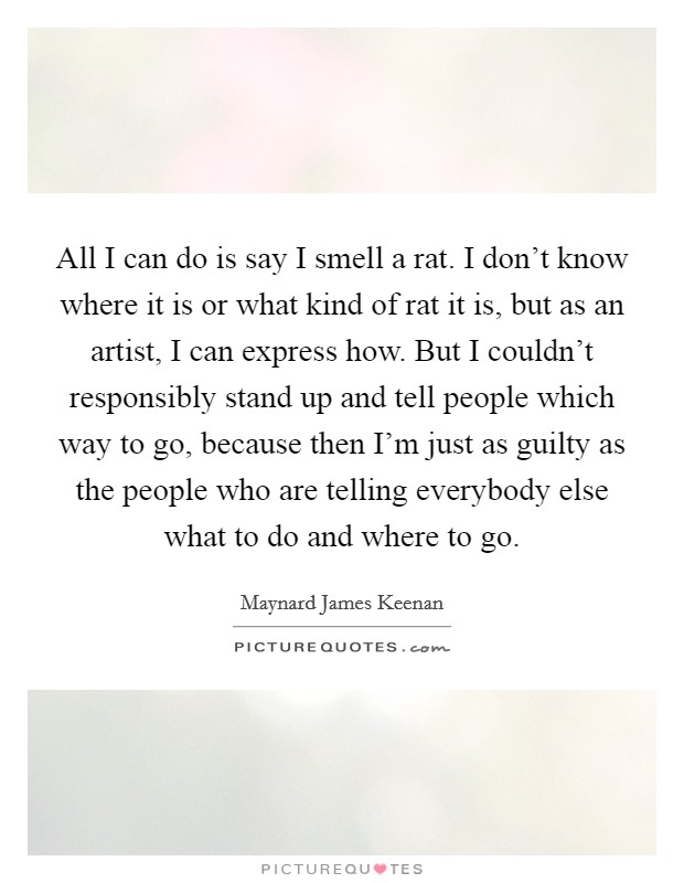 All I can do is say I smell a rat. I don't know where it is or what kind of rat it is, but as an artist, I can express how. But I couldn't responsibly stand up and tell people which way to go, because then I'm just as guilty as the people who are telling everybody else what to do and where to go Picture Quote #1