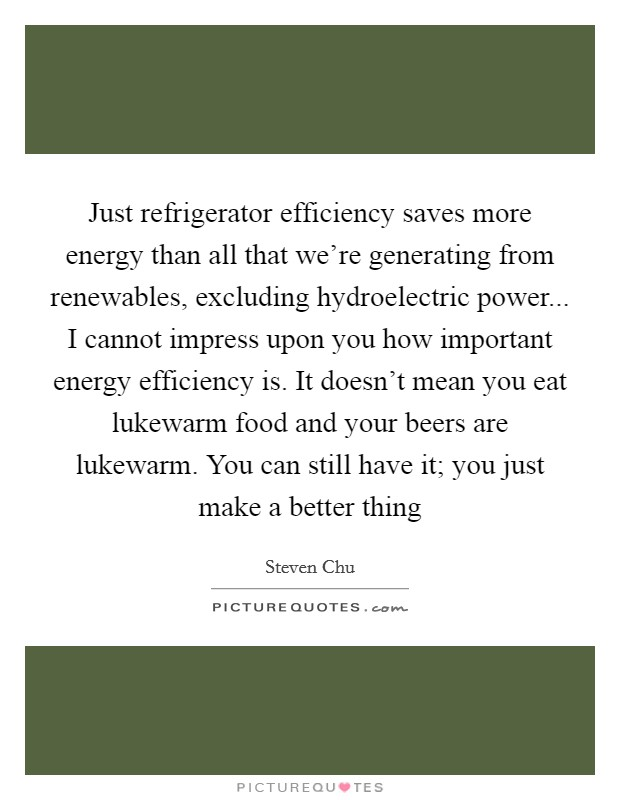 Just refrigerator efficiency saves more energy than all that we're generating from renewables, excluding hydroelectric power... I cannot impress upon you how important energy efficiency is. It doesn't mean you eat lukewarm food and your beers are lukewarm. You can still have it; you just make a better thing Picture Quote #1