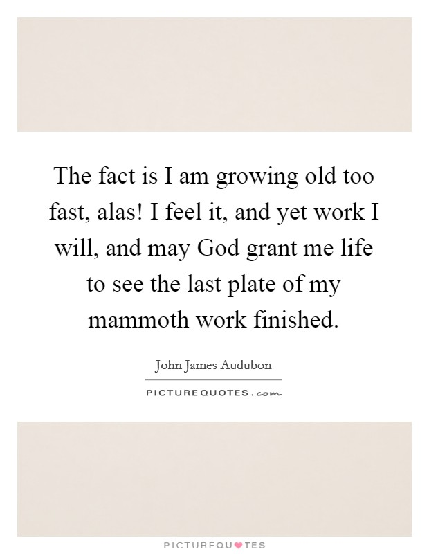The fact is I am growing old too fast, alas! I feel it, and yet work I will, and may God grant me life to see the last plate of my mammoth work finished Picture Quote #1