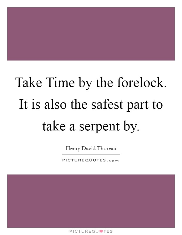 Take Time by the forelock. It is also the safest part to take a serpent by Picture Quote #1