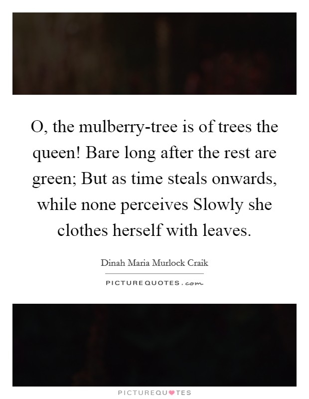 O, the mulberry-tree is of trees the queen! Bare long after the rest are green; But as time steals onwards, while none perceives Slowly she clothes herself with leaves Picture Quote #1