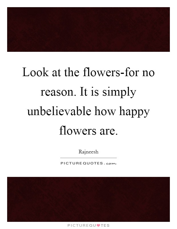 Look at the flowers-for no reason. It is simply unbelievable how happy flowers are Picture Quote #1
