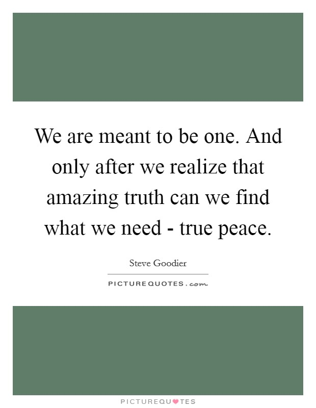 We are meant to be one. And only after we realize that amazing truth can we find what we need - true peace Picture Quote #1