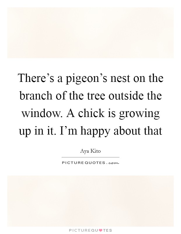 There's a pigeon's nest on the branch of the tree outside the window. A chick is growing up in it. I'm happy about that Picture Quote #1