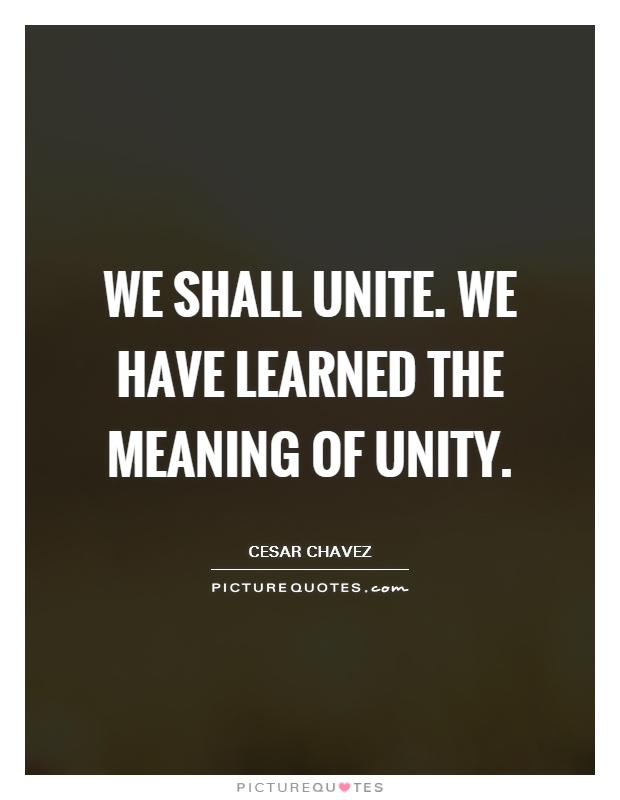 We shall unite. We have learned the meaning of Unity Picture Quote #1