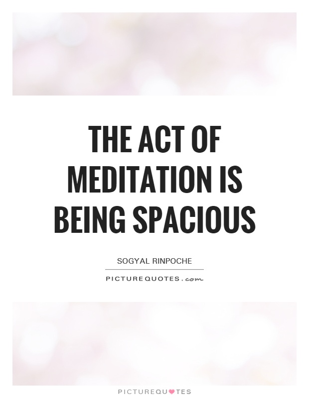 The act of meditation is being spacious Picture Quote #1