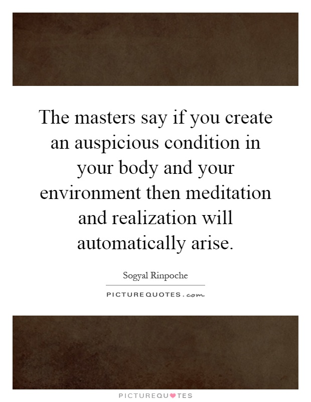 The masters say if you create an auspicious condition in your body and your environment then meditation and realization will automatically arise Picture Quote #1