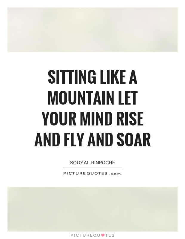 Sitting like a mountain let your mind rise and fly and soar Picture Quote #1