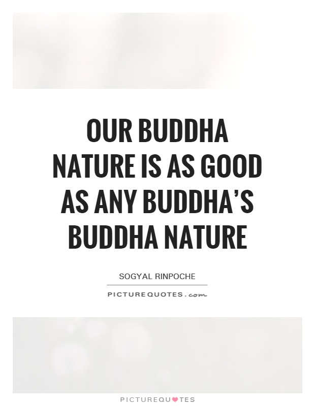 Our buddha nature is as good as any buddha's buddha nature Picture Quote #1