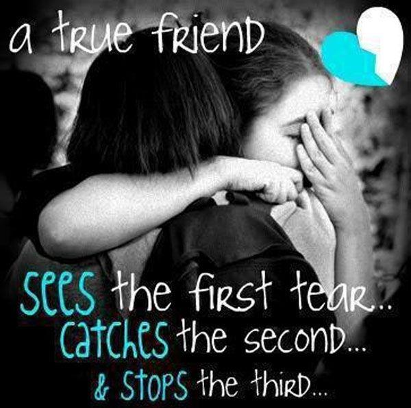 A true friend sees the first tear... catches the second and stops the third Picture Quote #1