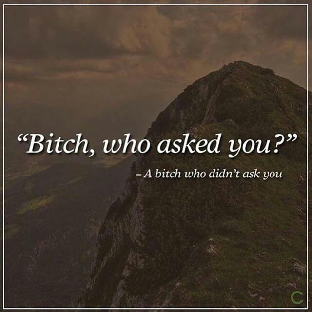Bitch, who asked you? A bitch who didn't ask you Picture Quote #1