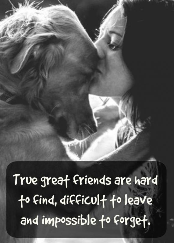 True great friends are hard to find, difficult to leave and impossible to forget Picture Quote #1