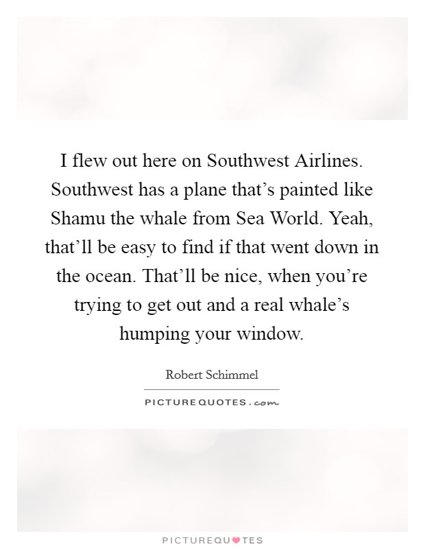 I flew out here on Southwest Airlines. Southwest has a plane that's painted like Shamu the whale from Sea World. Yeah, that'll be easy to find if that went down in the ocean. That'll be nice, when you're trying to get out and a real whale's humping your window Picture Quote #1