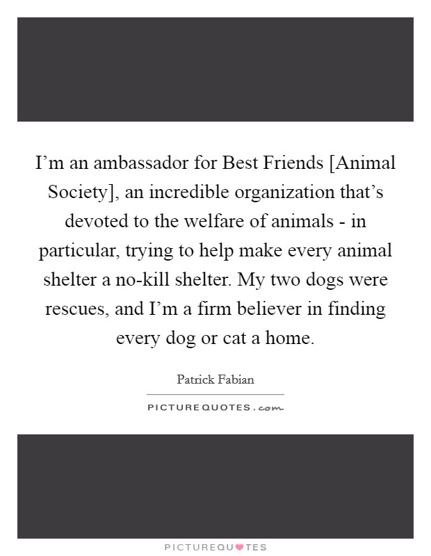 I'm an ambassador for Best Friends [Animal Society], an incredible organization that's devoted to the welfare of animals - in particular, trying to help make every animal shelter a no-kill shelter. My two dogs were rescues, and I'm a firm believer in finding every dog or cat a home Picture Quote #1