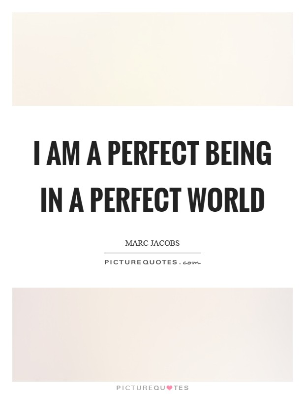 I am a perfect being in a perfect world Picture Quote #1