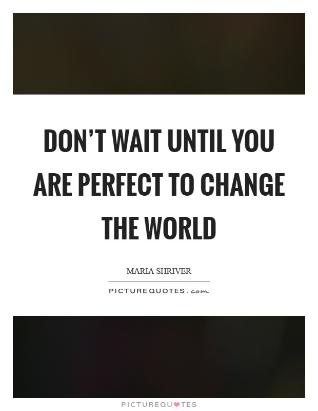 Don't wait until you are perfect to change the world Picture Quote #1