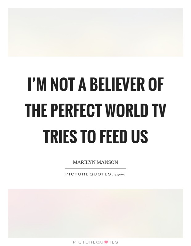 I'm not a believer of the perfect world TV tries to feed us Picture Quote #1