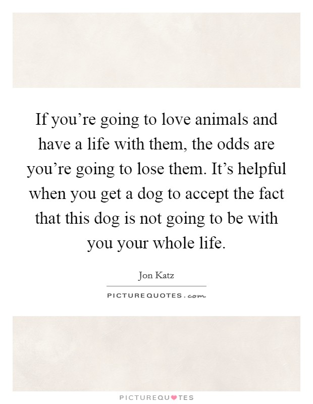 If you're going to love animals and have a life with them, the odds are you're going to lose them. It's helpful when you get a dog to accept the fact that this dog is not going to be with you your whole life Picture Quote #1