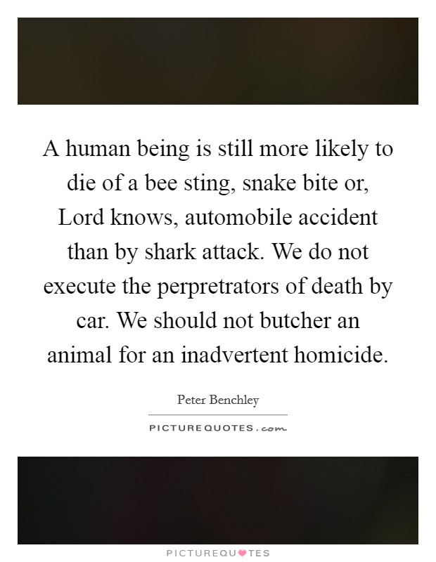 A human being is still more likely to die of a bee sting, snake bite or, Lord knows, automobile accident than by shark attack. We do not execute the perpretrators of death by car. We should not butcher an animal for an inadvertent homicide Picture Quote #1