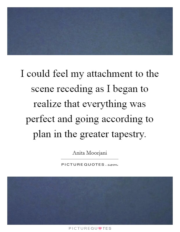 I could feel my attachment to the scene receding as I began to realize that everything was perfect and going according to plan in the greater tapestry Picture Quote #1