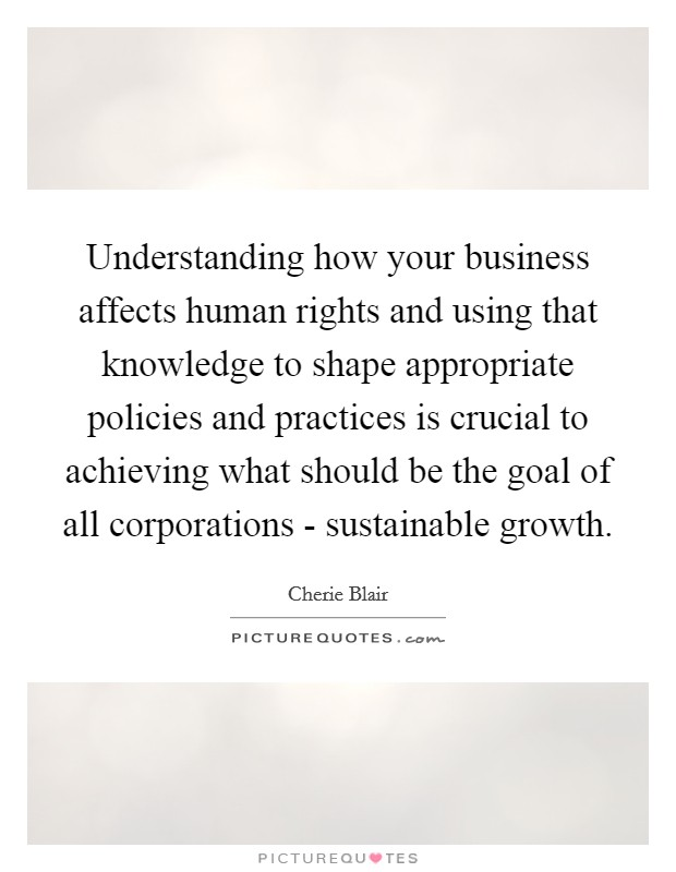 Understanding how your business affects human rights and using that knowledge to shape appropriate policies and practices is crucial to achieving what should be the goal of all corporations - sustainable growth Picture Quote #1