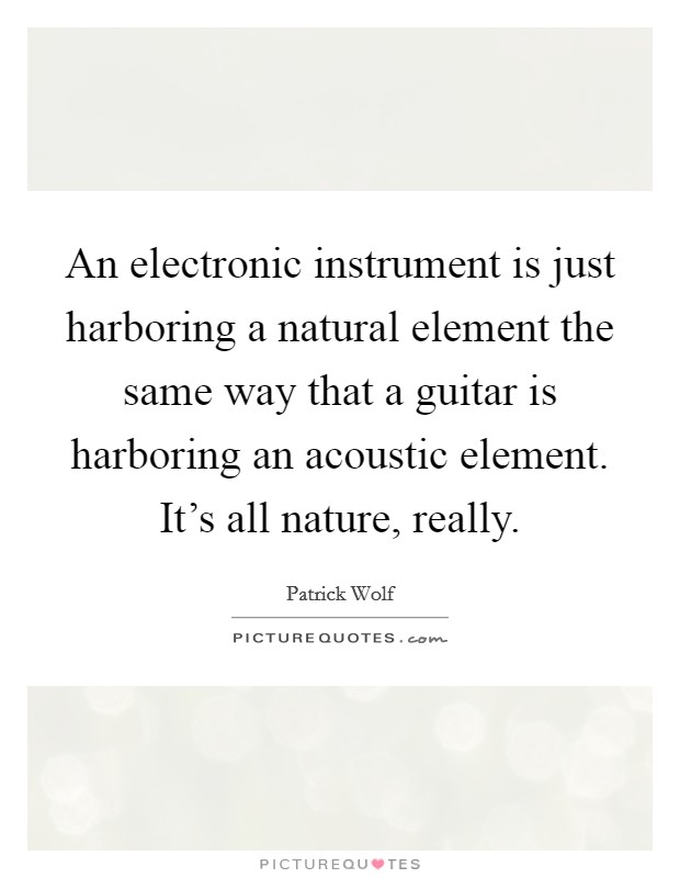 An electronic instrument is just harboring a natural element the same way that a guitar is harboring an acoustic element. It's all nature, really Picture Quote #1