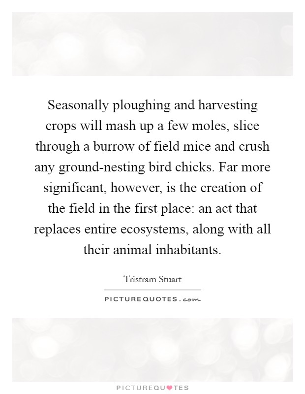 Seasonally ploughing and harvesting crops will mash up a few moles, slice through a burrow of field mice and crush any ground-nesting bird chicks. Far more significant, however, is the creation of the field in the first place: an act that replaces entire ecosystems, along with all their animal inhabitants Picture Quote #1