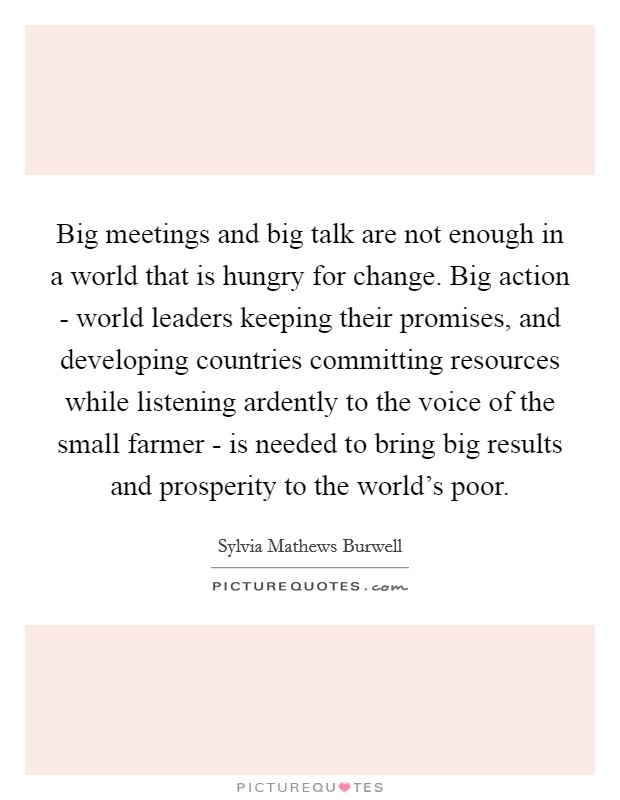 Big meetings and big talk are not enough in a world that is hungry for change. Big action - world leaders keeping their promises, and developing countries committing resources while listening ardently to the voice of the small farmer - is needed to bring big results and prosperity to the world's poor Picture Quote #1