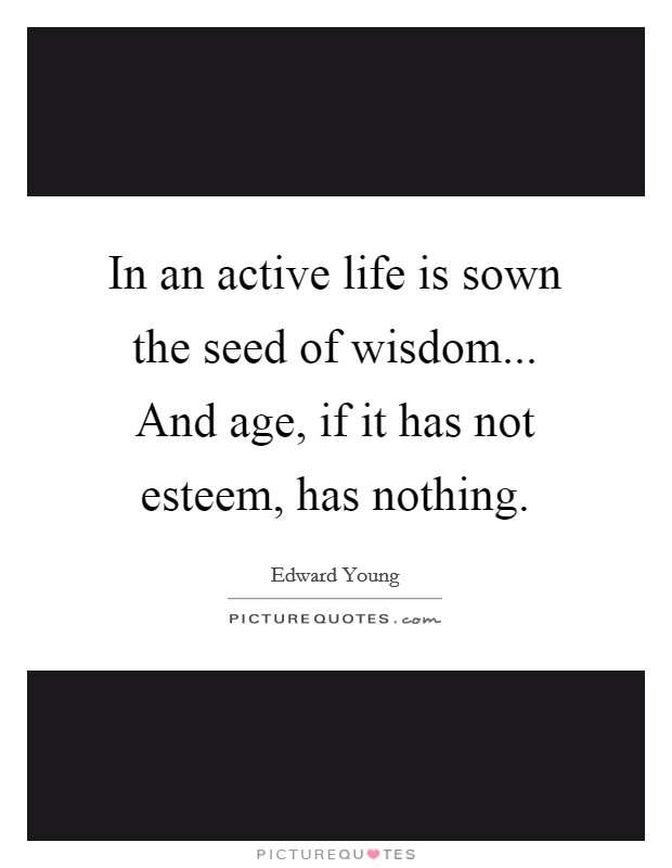 In an active life is sown the seed of wisdom... And age, if it has not esteem, has nothing Picture Quote #1