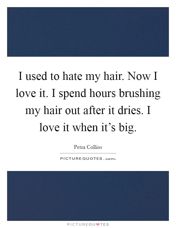 I used to hate my hair. Now I love it. I spend hours brushing my hair out after it dries. I love it when it's big Picture Quote #1