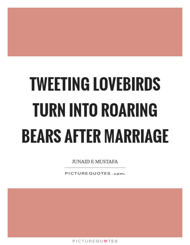 Tweeting lovebirds turn into roaring bears after marriage Picture Quote #1