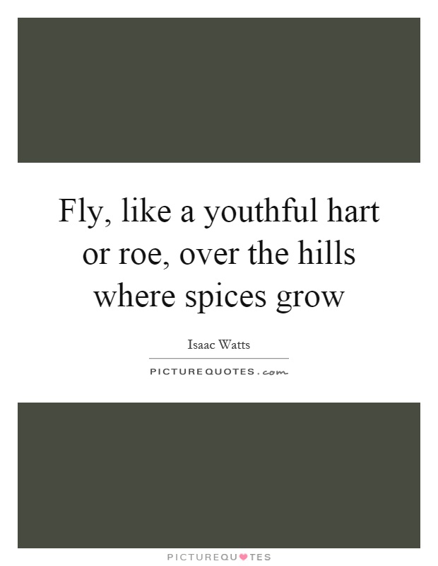 Fly, like a youthful hart or roe, over the hills where spices grow Picture Quote #1