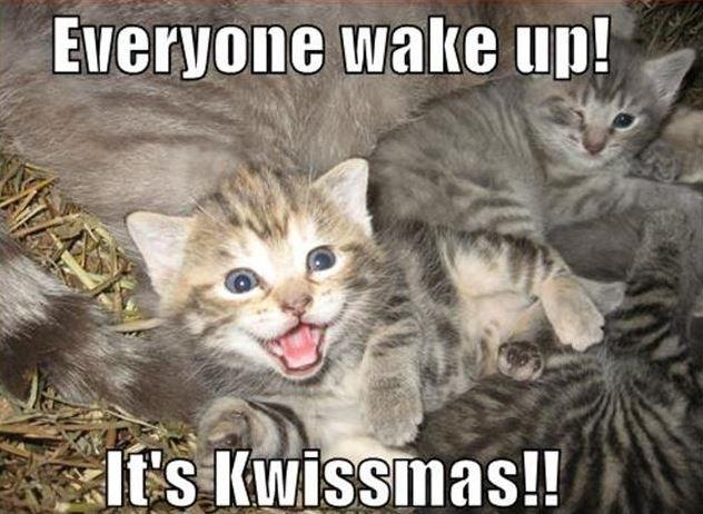 Everyone wake up! It's Kwissmas!! Picture Quote #1
