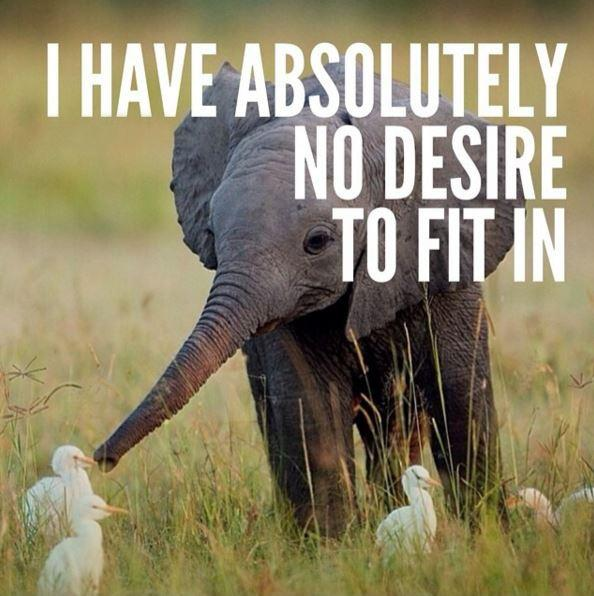 I Don T Fit In Anywhere Quotes: Being Different Quotes & Sayings
