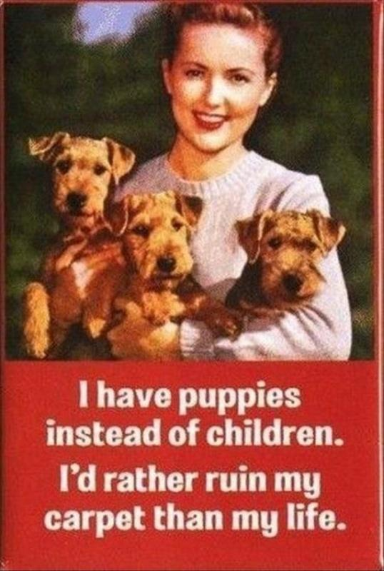 I have puppies instead of children. I'd rather ruin my carpet than my life Picture Quote #1