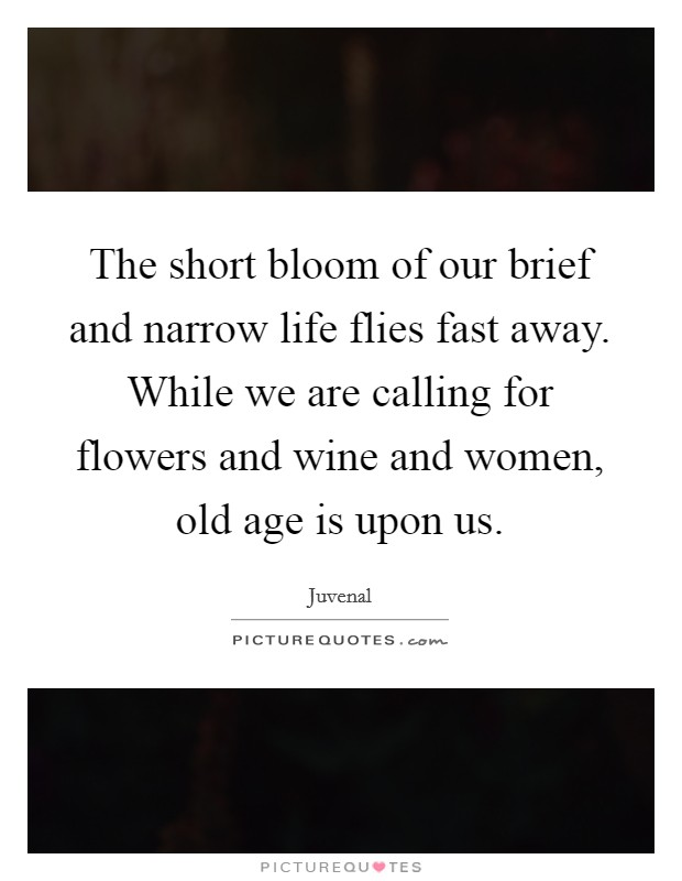 The short bloom of our brief and narrow life flies fast away. While we are calling for flowers and wine and women, old age is upon us Picture Quote #1