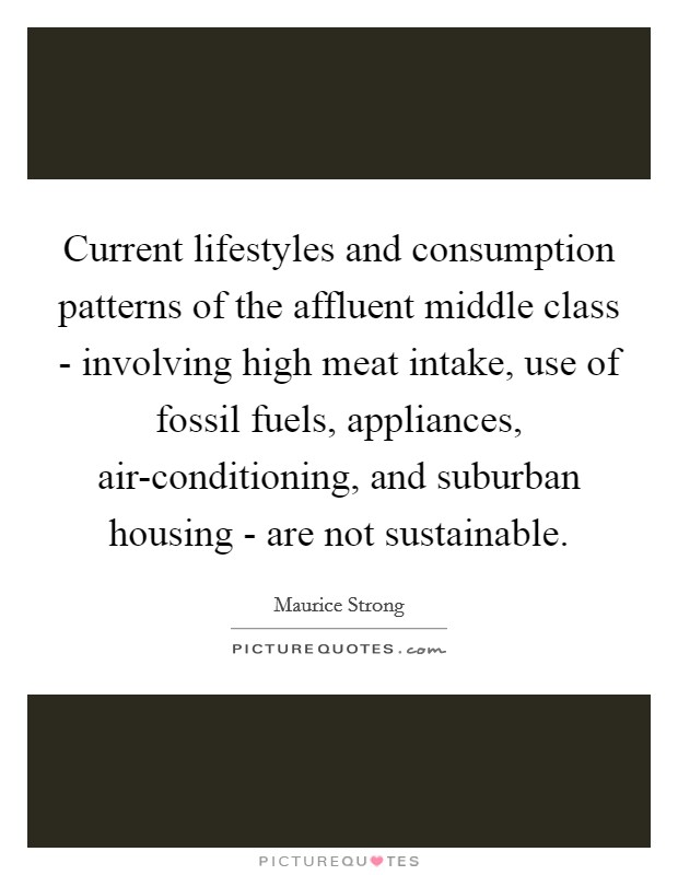 Current lifestyles and consumption patterns of the affluent middle class - involving high meat intake, use of fossil fuels, appliances, air-conditioning, and suburban housing - are not sustainable Picture Quote #1