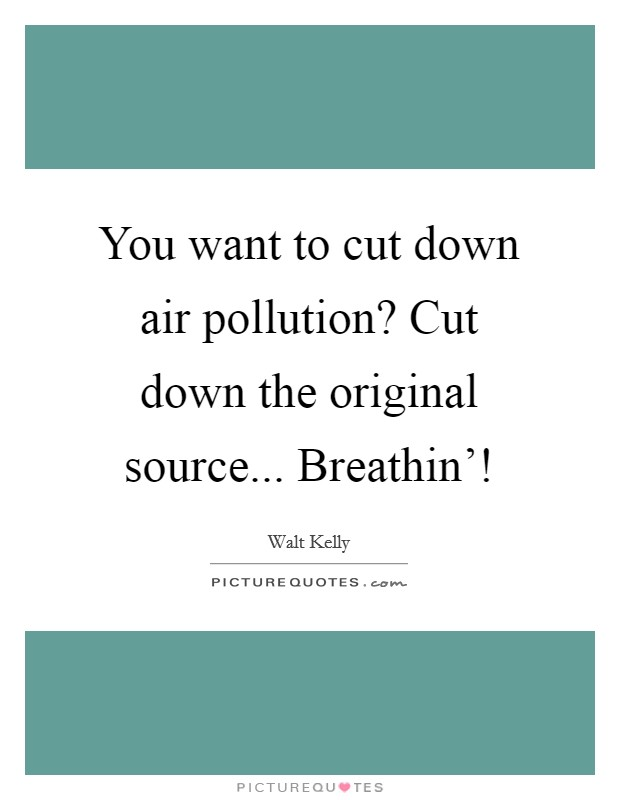 You want to cut down air pollution? Cut down the original source... Breathin'! Picture Quote #1