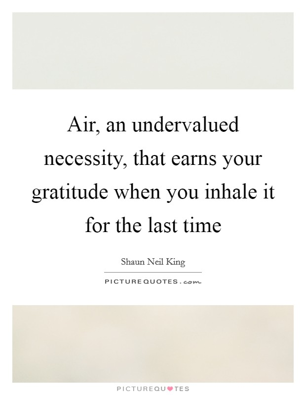 Air, an undervalued necessity, that earns your gratitude when you inhale it for the last time Picture Quote #1