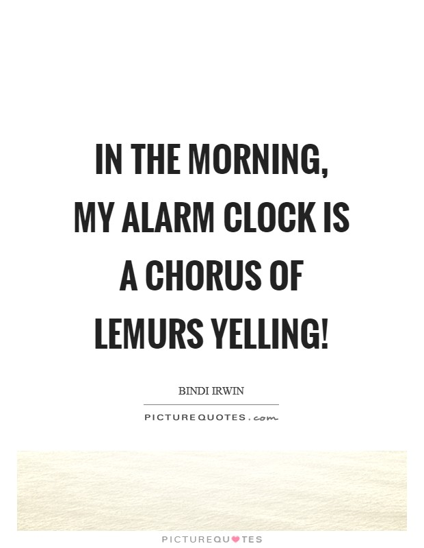In the morning, my alarm clock is a chorus of lemurs yelling! Picture Quote #1