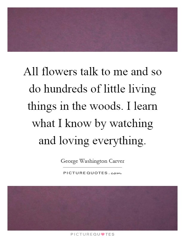 All flowers talk to me and so do hundreds of little living things in the woods. I learn what I know by watching and loving everything Picture Quote #1