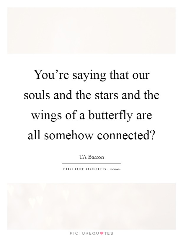 You're saying that our souls and the stars and the wings of a butterfly are all somehow connected? Picture Quote #1