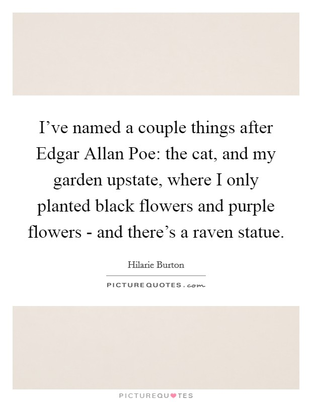 I've named a couple things after Edgar Allan Poe: the cat, and my garden upstate, where I only planted black flowers and purple flowers - and there's a raven statue Picture Quote #1