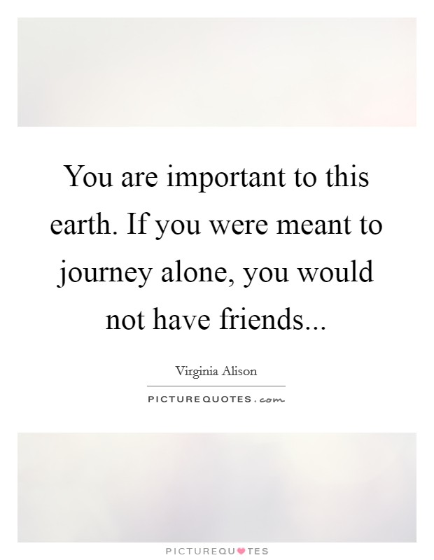 You are important to this earth. If you were meant to journey alone, you would not have friends Picture Quote #1
