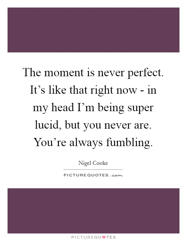 The moment is never perfect. It's like that right now - in my head I'm being super lucid, but you never are. You're always fumbling Picture Quote #1